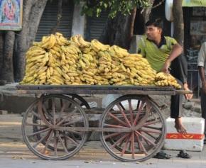 Delhi = One BigCarnival