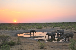 10 Tips for Visiting the Best Safari Park in Africa
