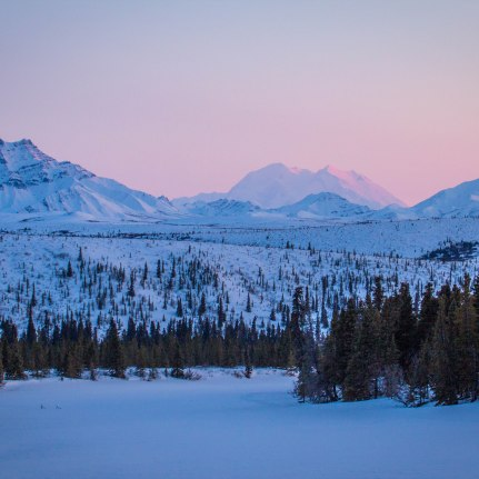 Denali in the winter