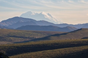 Denali from the Savage River area.