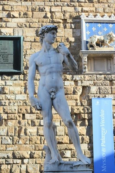 David Statue Penis 115