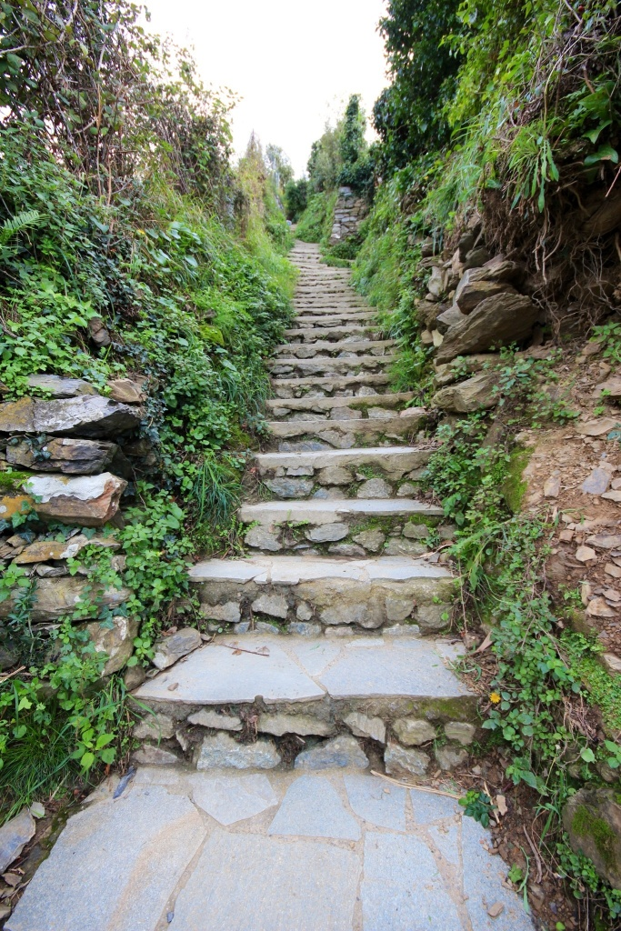 Cinque Terra Steps on the Hiking Trail