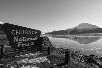 Chugach National Forest Sign