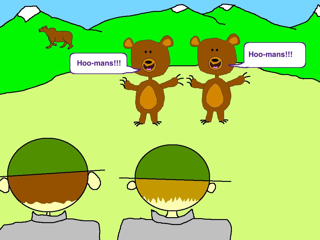curious bears