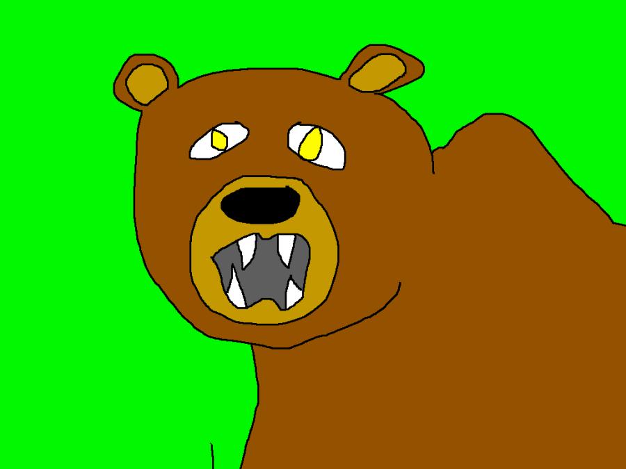 Bear30