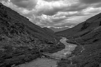 Savage River Black and White
