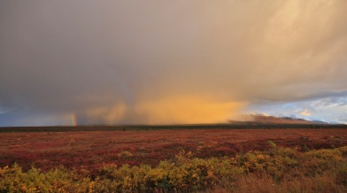 Broad Pass Alaska rainbow