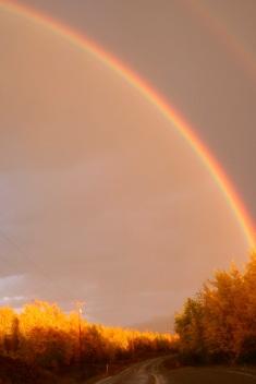 Stampede road rainbow Alaska