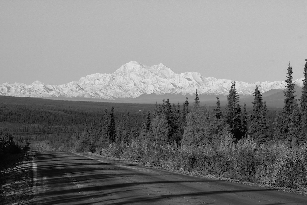 Mt. McKinley from the Denali Highway