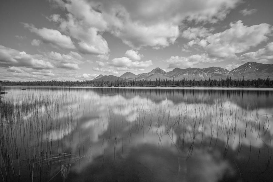 Denali Highway Lake