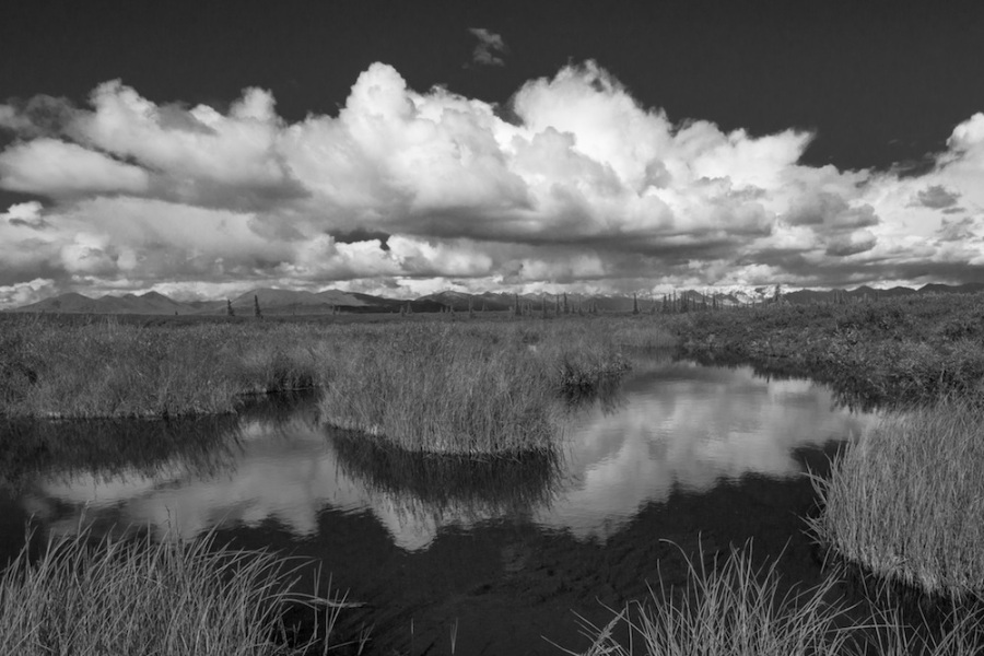 Clouds reflect in pond