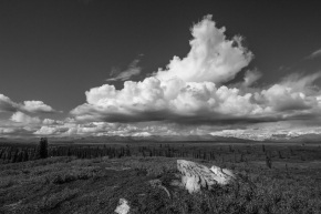 The Spectacular Denali Highway in Black and White