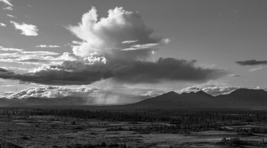 Denali highway black and white