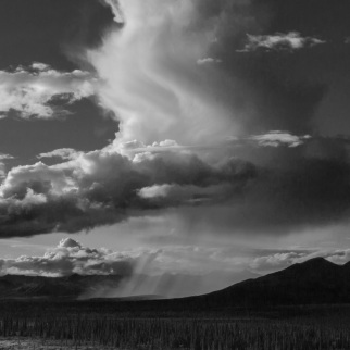 Rain shafts Denali Highway