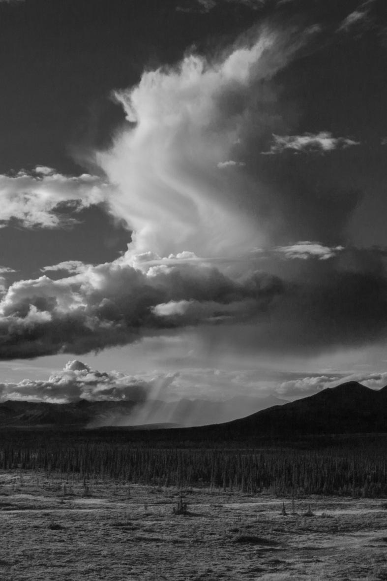 Rain shafts Denali Highway