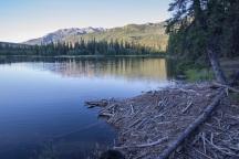 Beaver Lodge at Horseshoe Lake in Denali Park
