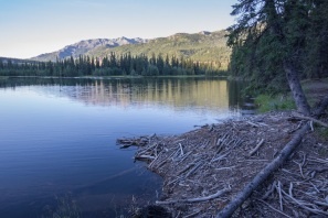 Beaver Lodge at Horseshoe Lake in Denali Park