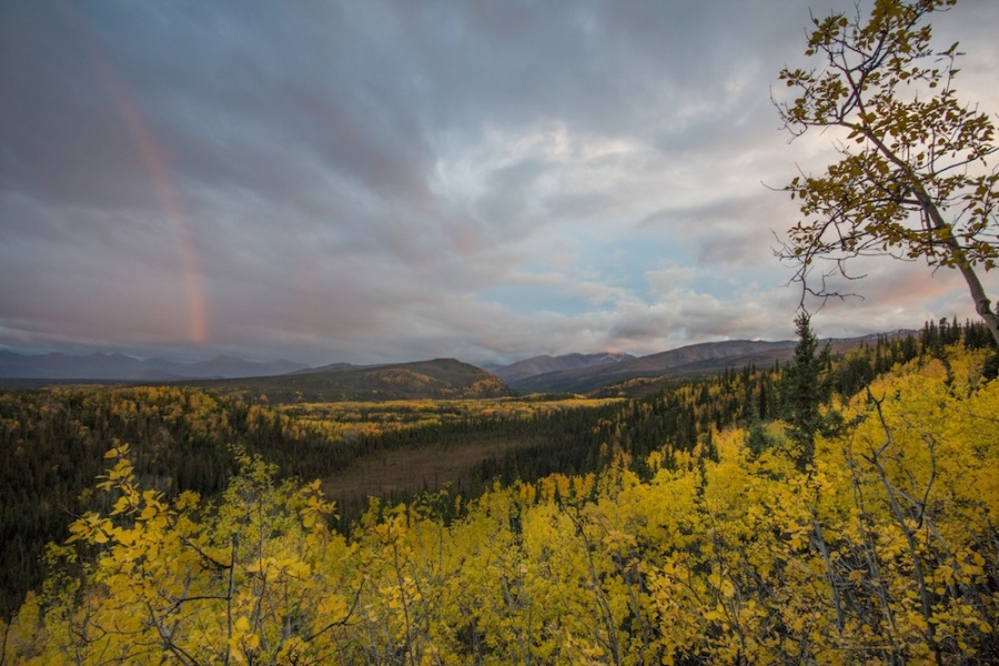 Sunset Rainbow in Denali