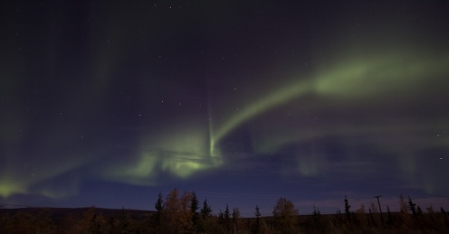 Aurora Dancing in the sky