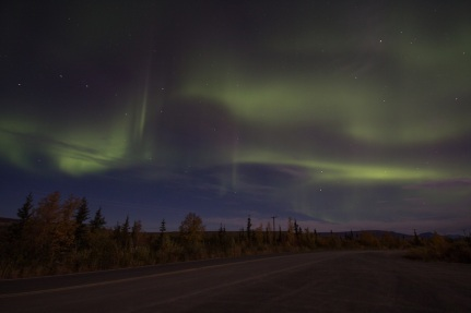 Aurora from Stampede Road, Alaska