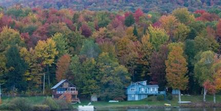 Houses on Lake Elmore