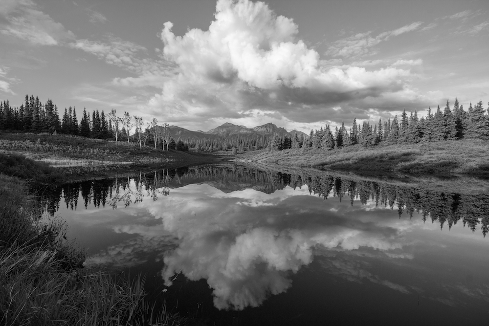 Lake in Black and White Denali Park