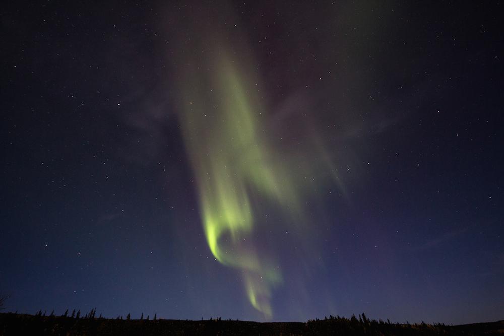 Northern Lights, Denali Park, AK