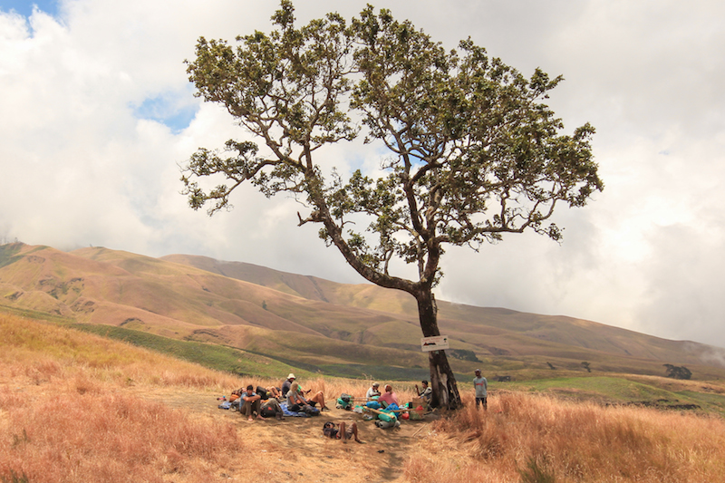 Rinjani Trekkers taking a break in under a tree.