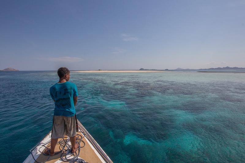 Komodo snorkeling.