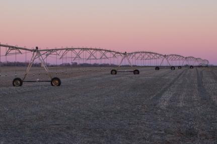 Sunset and irrigation