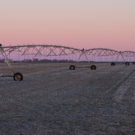 Sunset and irrigation