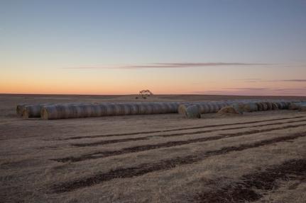 Oklahoma Farmland