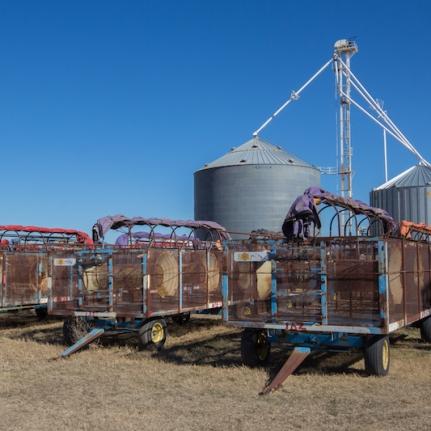 Cotton machinery near Hydro