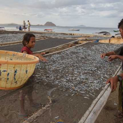Locals drying fish.
