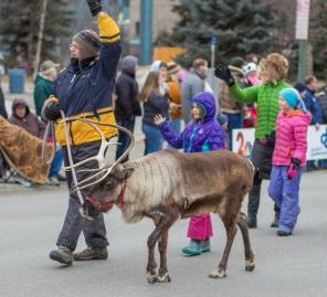 Reindeer in parade