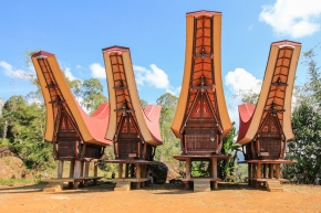 The Fascinating Culture of the Tana Toraja