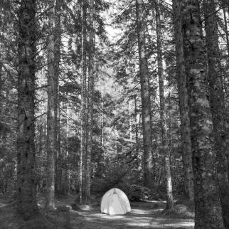 Glacier Bay Camping