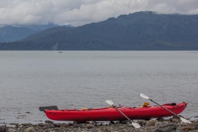 Glacier Bay Kayaking