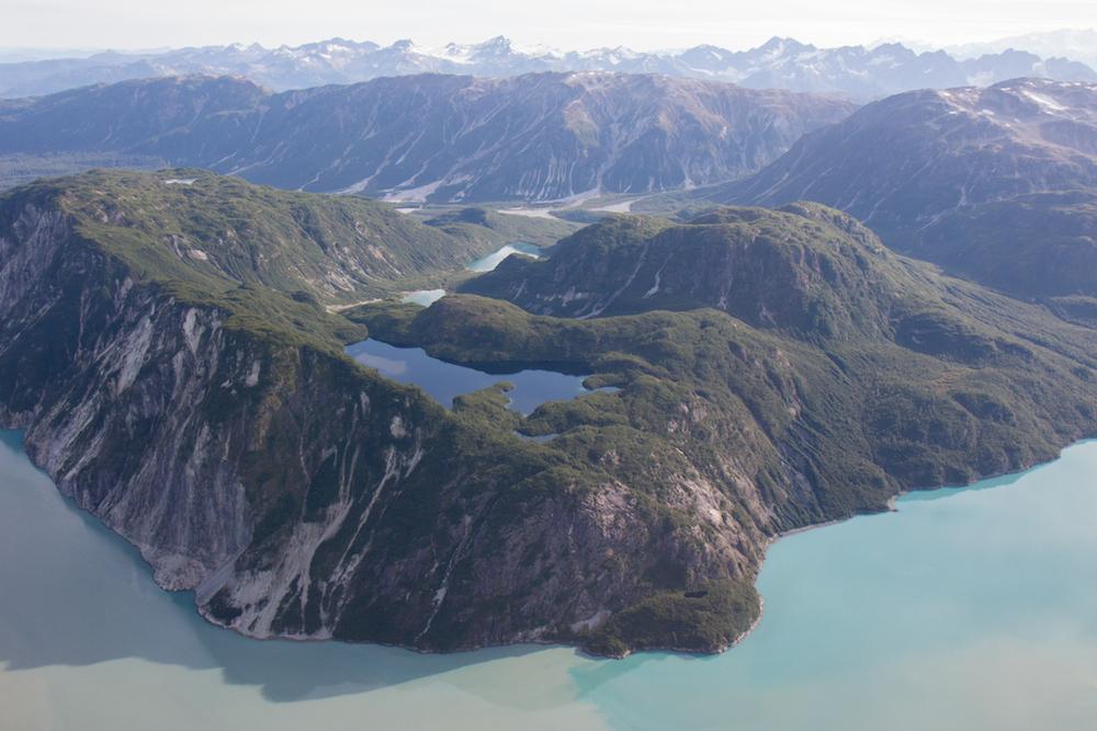 Glacier Bay East Arm