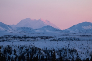 Denali from Savage River