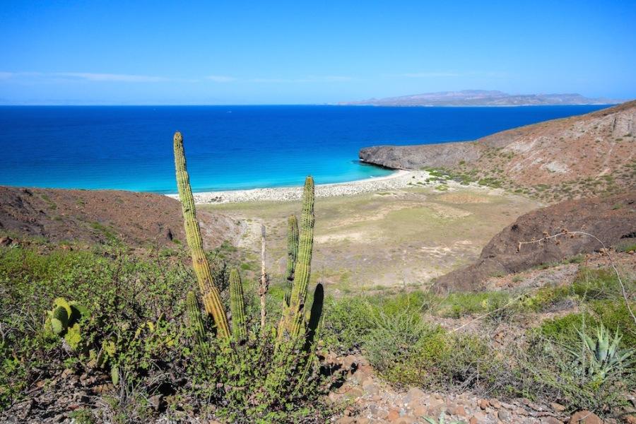 La Paz beach