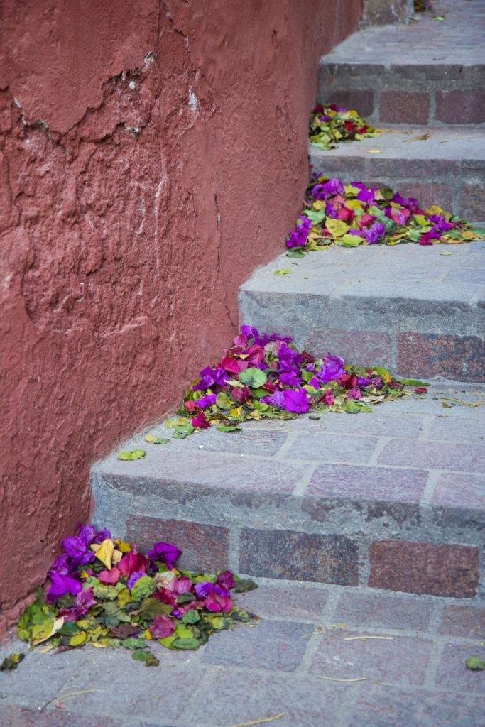 Flowers on street