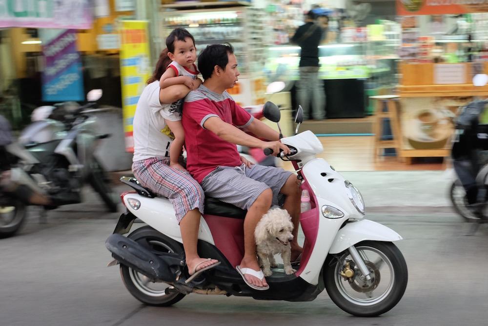 Family with Dog on Bike Bangkok