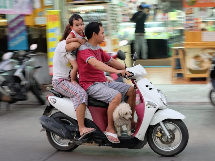 Family with Dog on Bike Bangkok
