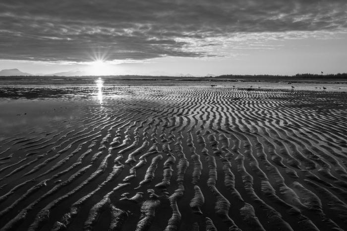 Gustavus Beach sunset black and white