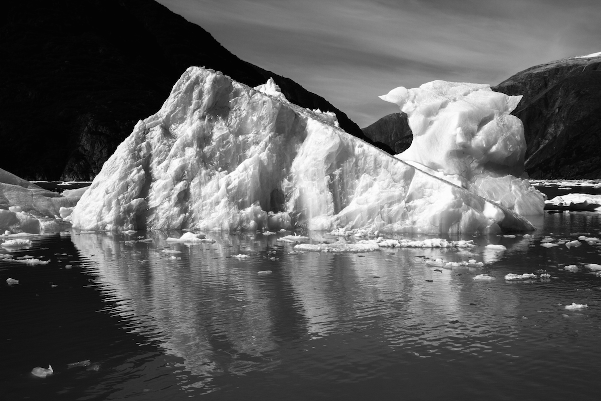 Iceberg in Tracy Arm black and white