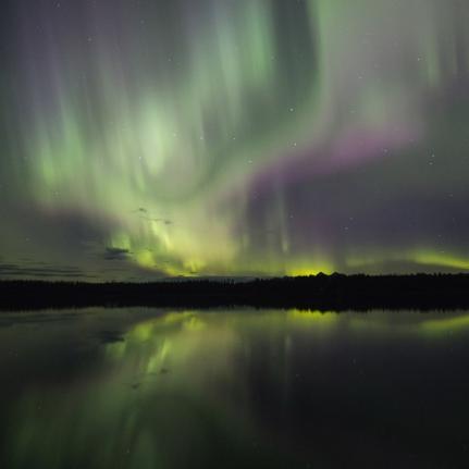 Glacier Bay Northern Lights