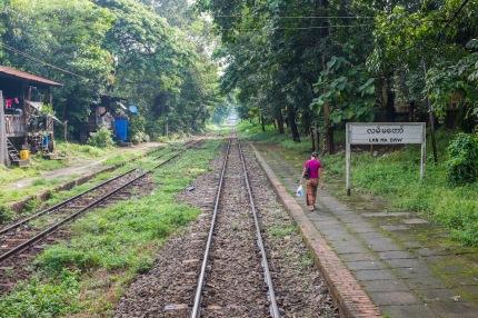 Yangon circle train view