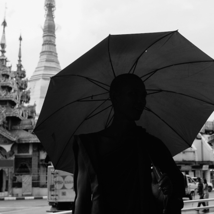 Monk in Yangon