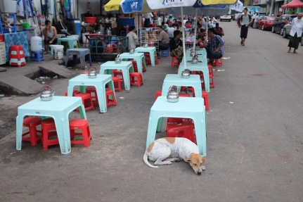 dog at street vendor